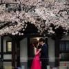 01_Japan_Romantic Life_1